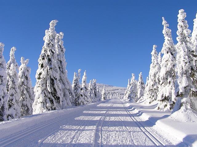 krásně zasněžená krajina